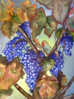 Laura's Grapes